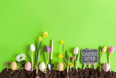 Easter flower bed background Stock Images