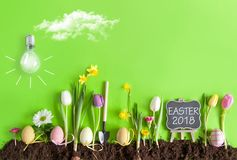 Easter flower bed background Royalty Free Stock Photos