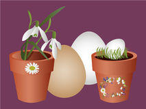 Easter flowerpot Royalty Free Stock Photo