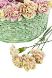 Easter flowers Royalty Free Stock Photography