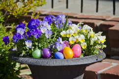 Easter Flowers Stock Photos