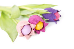 Easter flowers Royalty Free Stock Photo
