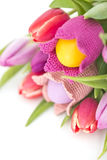 Easter flowers Stock Image