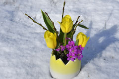 Easter flowers Royalty Free Stock Images