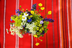 Easter flowers Royalty Free Stock Photos