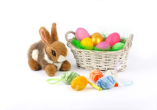 Easter - Fluffy bunny and basket with painted eggs. On a white background Royalty Free Stock Photos