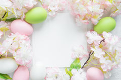 Easter frame with flowers and Easter eggs. Beautiful delicate Easter frame with pink cherry flowers and multicolored Easter eggs Stock Photos