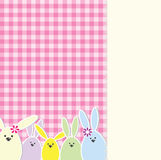 Easter bunny card Royalty Free Stock Photos