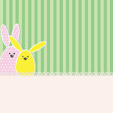 Easter bunny card Stock Images