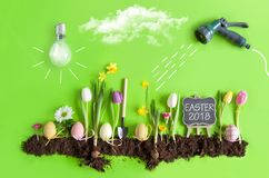 Easter garden with painted eggs. Easter flower bed garden with row of painted eggs amongst flowers, clouds, light bulb as the sun, and hose pipe with a sketch of Royalty Free Stock Images