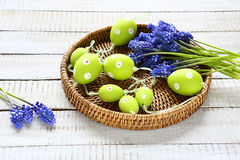 Easter garland and hyacinth on a tray Stock Photos