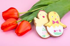 Easter gifts, sweet gingerbreads, flowers on pastel background royalty free stock images