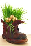 Easter golden eggs in old shoes, with fresh grass Stock Image
