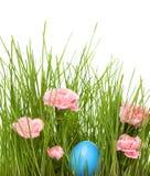 easter gräs Royaltyfri Fotografi