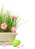 Easter grass. Easter eggs with grass and carnations in a decorative pot on white stock photos