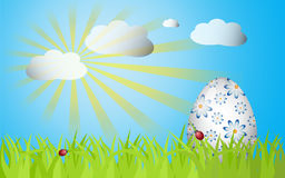 Easter grass ang egg. Easter design with grass, sunrise, egg and ladybug Stock Images