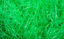 Easter grass background. Green easter grass background or texture Royalty Free Stock Images