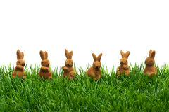 Easter Grass border, cutout, hares in a row Royalty Free Stock Image