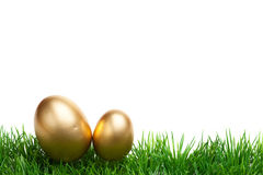 Easter Grass border, golden eggs, isolated on white Royalty Free Stock Photo