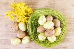 Easter green straw nest filled with colourful pastel eggs, top view stock images