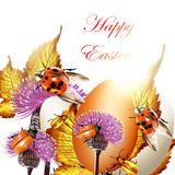 Easter greeting background with eggs and ladybirds Stock Images