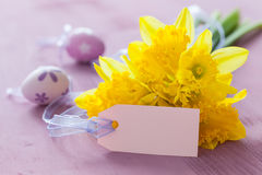 Easter greeting card. With daffodils and label with copy space stock image