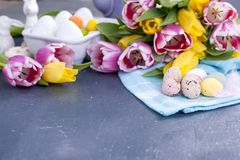 Easter greeting card with colored quail eggs candies on blue knitted napkin and tulips flowers. Spring holidays concept with copy stock photos