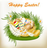 Easter greeting card with colorful eggs, green grass and nest Royalty Free Stock Image