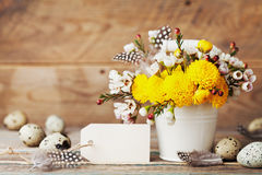 Easter greeting card with colorful flowers, feather and quail eggs on rustic wooden background. Beautiful spring composition. Stock Photography