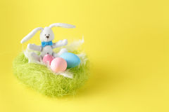Easter greeting card with easter bunny, grass and eggs in nest Stock Photography