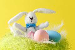 Easter greeting card with easter bunny, grass and eggs in nest Royalty Free Stock Photo
