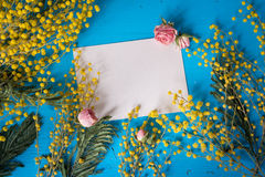Easter greeting card. Empty blank/paper and yellow mimosa flowers Stock Photography