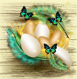 Easter greeting card with nest full of eggs and colorful ferns Stock Images