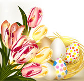 Easter greeting card with nest full of eggs and tulips vector illustration
