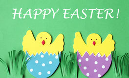 Easter hand made greeting card: hatched chicken in eggshell isolated on flower background Royalty Free Stock Image