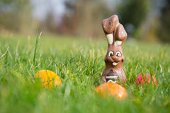Easter hare with eggs Royalty Free Stock Photo