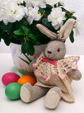 Easter hare with eggs. Easter hare with colored eggs Stock Photos
