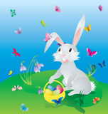 Easter hare on the green grass under blue sky with eggs in baske Royalty Free Stock Photos