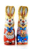 Easter hares Stock Image