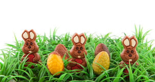 Easter hares in the grass Stock Photo