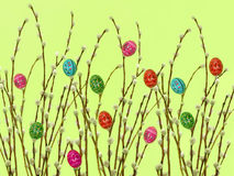 easter hedgerow Arkivbild