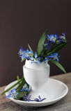 Easter holiday background with flowers in egg-cup Stock Photography