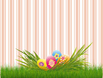Easter holiday colorful easter eggs pink stripe Stock Images