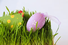 Easter holiday decoration with chicken, egg and grass Royalty Free Stock Photography