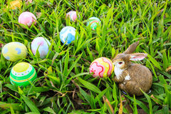 Easter. In easter holiday,easter eggs,easter bunny Stock Images