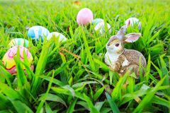 Easter. In easter holiday,easter eggs,easter bunny Royalty Free Stock Photography