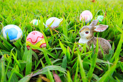 Easter. In easter holiday,easter eggs,easter bunny Stock Photography