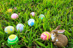 Easter. In easter holiday,easter eggs,easter bunny Stock Image
