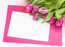Easter holiday greeting with pink tulips Stock Photography