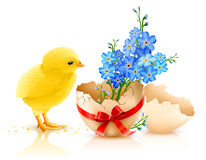Easter holiday illustration with chicken. Isolated on white background Stock Photos